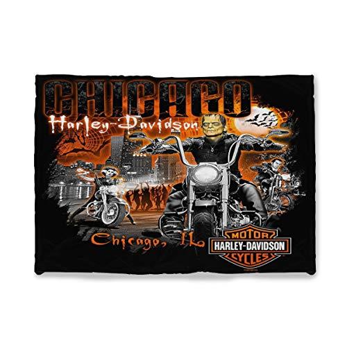 Harley Davidson - Manta de microfibra ultrasuave suave y cálida con impresión digital, manta de franela para regalo de cumpleaños, regalo de Navidad, 125 x 150 cm