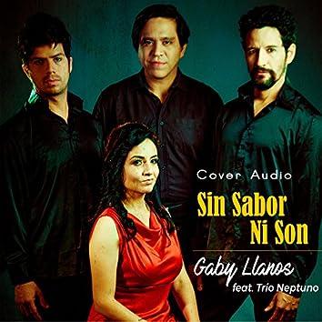 Sin Sabor Ni Son (feat. Trio Neptuno)