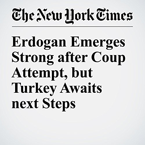 Erdogan Emerges Strong after Coup Attempt, but Turkey Awaits next Steps cover art