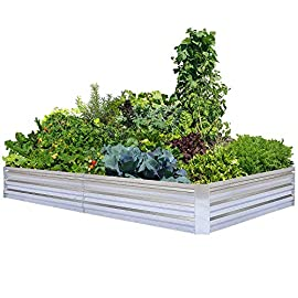 Galvanized raised garden beds for vegetables large metal planter box steel kit flower herb 2 ✔ size: 60''(l) x 36''(w) x 12''(h), 72''(l) x 36''(w) x 12''(h), provide ample growing space to raise vegetables, herbs, flowers and plants ✔ durable: made of stable thickened metal, frame it all construction with anti-rusty coating for long-time use ✔ open bottom: sits on the ground garden bed, provide good drainage, keep weeds away from soil, defense against pests, and protect your plants.