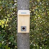 Top 10 Best Birdhouses (May 2020) Review 13