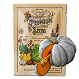 Organic Jarrahdale Pumpkin Seeds for Planting - 4 g 20 Seeds - Organic, Heirloom, Non-GMO, Farm & Vegetable Gardening Seeds - Sealed in a Beautiful Mylar Package for Extended Shelf Life