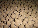 Bio de arcilla abono Fertilizante Esferas//suelo adicional Top Planta Crecimiento en acuario suelo abono Fertilizante tratadas por ejemplo para hierro (Amazonas tamaño aprox. 0,8cm diámetro