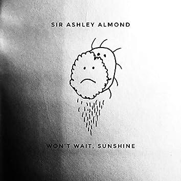 Won't Wait, Sunshine