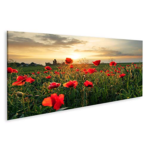 Bild Bilder auf Leinwand Mohnblumen Feldblume bei Sonnenuntergang Wandbild, Poster, Leinwandbild PYC