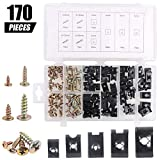 170Pcs Auto Car U-Clip U Nut and Screw Assortment Kit for Dash Door Panel Interior SAE...