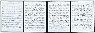 4ページ展開 楽譜ファイル 書込みOK A4 ライティングファイル 楽譜 6枚収納 発表会 演奏会 練習 楽譜ホルダー 楽譜スタンド (デザインあり)