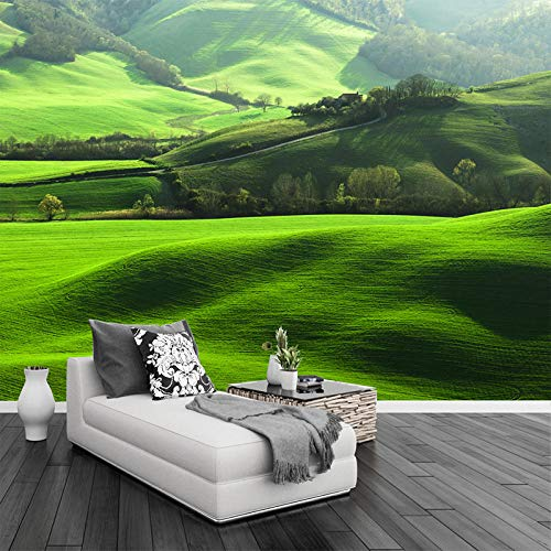 VGFGI HD Lawn Mountain Natural Scenery Photo Wall Mural TV Living Room Sofa Background Home Decoration Seamless 3D Wallpaper Mural-400cm(W) x300cm(H)