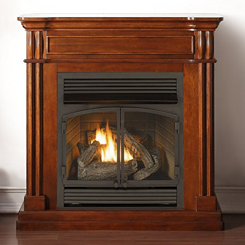 Duluth Forge Vent Free, 32,000 BTU, Remote Control, Autumn Spice Finish Dual Fuel Fireplace