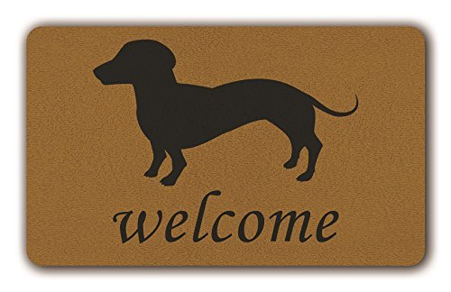 PeteGray Felpudo de perro salchicha divertido, para interior y exterior, antideslizante, para puerta delantera, para pasillo, baño, mástil, 40 x 60 cm