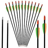 Vsduiria Fiberglass Practice Archery Arrows for Recurve Bows & Traditional Bow-30 inch Target Hunting Arrow for Kids Youth and Adults - (12 Pack)