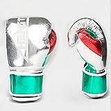 HOUJIA Guantes de Boxeo,Hechos de Cuero Maya para Kick Boxing Muay Thai Saco Entrenamiento Sparring Guantes de Boxeo Guantes de Entrenamiento, Golpear Sacos de Arena,Gloves for Muay Thai