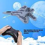 Tanktoyd FX-822 Simulation Avion Planeur Avion Modèle télécommandé hélicoptère Jouet télécommandé RC Planeur Avions en Mousse Radiocomandati aux Adultes Enfants débutants (Taille : 2 Batteries)