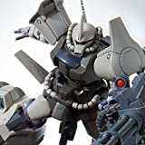 Premium Bandai Gundam 08th MS Team P-BANDAI Gouf Flight Type HG 1/144 Model Kit