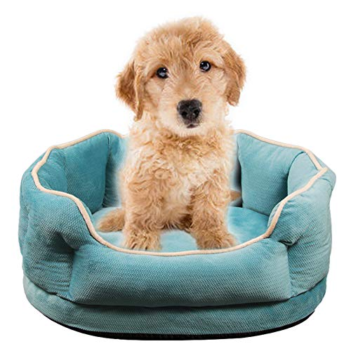 JOOFFF Suave Cama de Perros,Antideslizante Cojín para Perros Grandes Medianos y Qequeños,Cama de Mascotas Extraíble y Lavable-Azul S