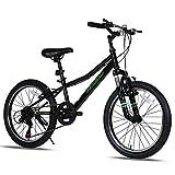Petimini 20 Inch Kids Mountain Bike for Boys Bike...