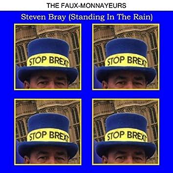 Steven Bray (Standing in the Rain)
