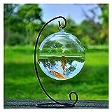 luckxuan Peceras Forma Redonda Colgante de Vidrio Acuario Fish Fish Tank Flower Flor Flor Florero con Taller de Altura Decoración del hogar Acuarios (Color : Black)