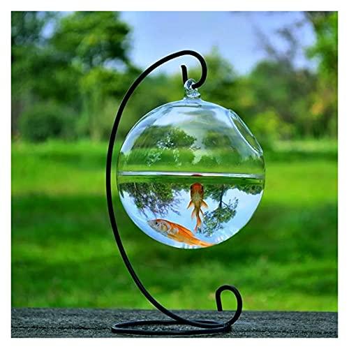 xinxinchaoshi Pecera Forma Redonda Colgante de Vidrio Acuario Fish Fish Tank Flower Flor Flor Florero con Taller de...