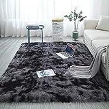 Tapis moelleux au sol moelleux moelleux tapis épais tapis de salon de style moderne résistant à la tache de salon