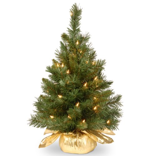 HOT BUY – National Tree 24 Inch Majestic Fir Tree with 35 Clear Lights in Gold Cloth Bag (MJ3-24GDLO-1).
