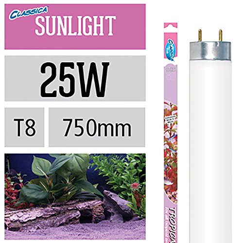 Arcadia Tropical Sunlight 25 Watt Lampe Aquarium Leuchtstofflampe