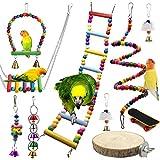 Juguetes de Loro Pájaros 10 Piezas con Juguete de Masticación y Columpios de Perchas Usado - Decoracion de Pajarera y Campana Colgante Hamaca para Periquitos, Cockatiels #1