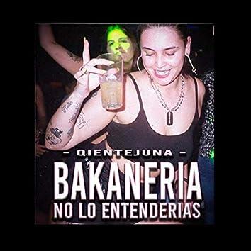 Bakaneria No Lo Entenderias