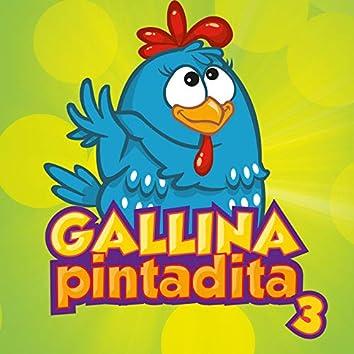 Gallina Pintadita 3