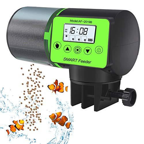 food timer fish - 3