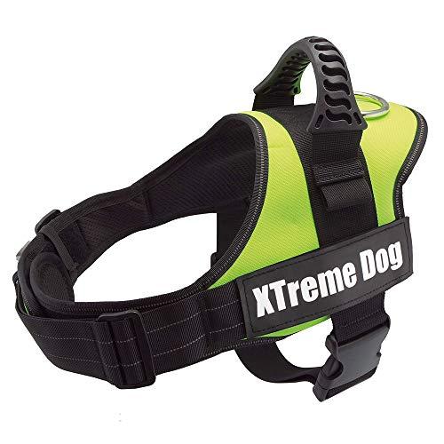 Arquivet Arnés perro Xtreme Dog - Verde Neon - Talla: M/61-81 cm