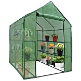 Mini Walk-in Greenhouse