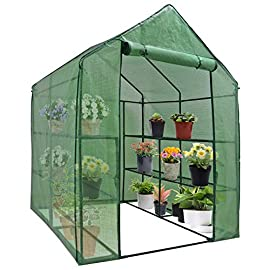 "Mini Walk-in Greenhouse Indoor Outdoor -2 Tier 8 Shelves- Portable Plant Gardening Greenhouse (57L x 57W x 77H Inches… 1 【Strong Construction】This mini walk-in greenhouse is built with high quality metal frame with powder coating, durable bearing net on each layer is strong enough to hold more seed trays, pots and plants growth. The clear waterproof PE cover protects plants from frost or pests while allowing nourishing sunlight to pass through. 【Indoor Outdoor Greenhouse】Waterproof and UV protection, ideal growing environment , can be used indoor and outdoor at all seasons. Perfect for protecting young plants or extending the plant growing season. 【Portable & Easy Setup】Overall Dimensions: 57""L x 57""W x 77""H, Perfect Size for Easy Moving to Indoor or Outdoors. Easy to assemble, no tools required. Enjoying a lot of fun of the flowers and plants in your leisure time!"