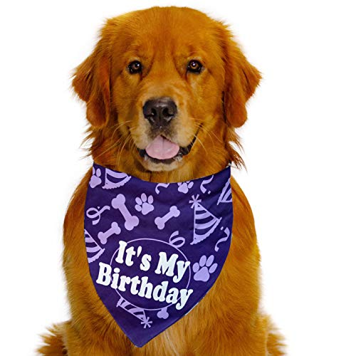 Happy Tails Dog Birthday Bandana Royal Purple