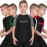 Elite Sports Rash Guards for Boys and Girls, Short Sleeve Compression BJJ Kids and Youth Rash Guard (Gray, Large)