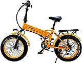 Bicicleta Eléctrica Playa Nieve Plegable Bicicleta eléctrica 20 pulgadas Neumático de grasa 48V500W Motor 12.8Ah Batería de litio, Batería de litio de Lithium Batería de litio para adultos para adulto