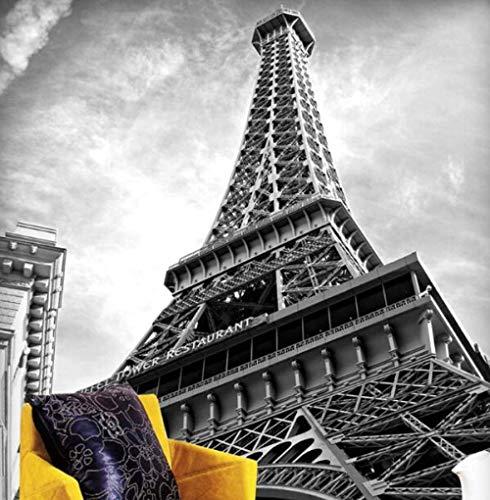 3D vliesbehang foto vlies premium fotobehang textured zwart & wit Eiffeltoren 3D fotobehang behang behang wandafbeeldingen voor bank achtergrond woonkamer 350*245 350 x 245 cm.