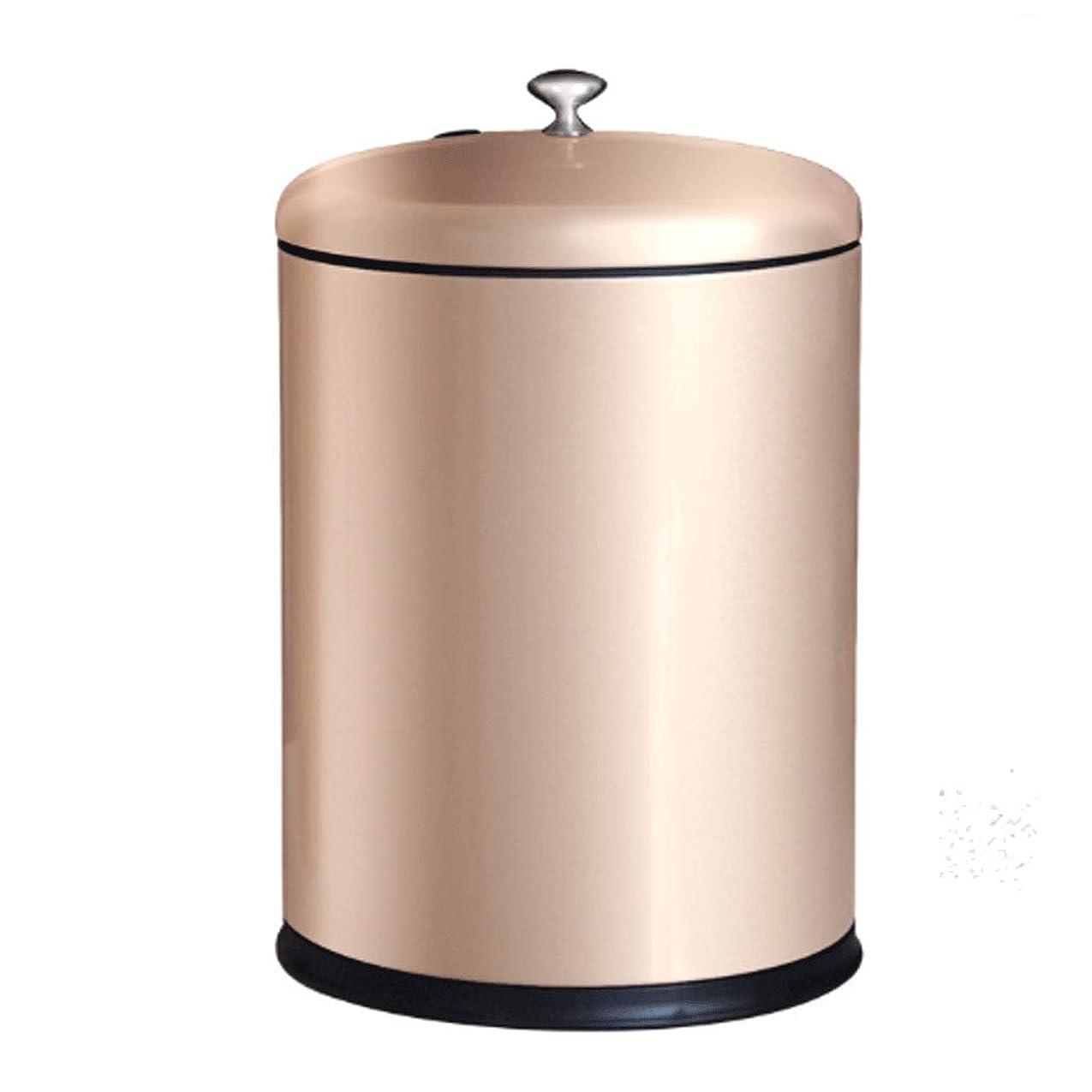 気球設計マスクMai? ごみ箱、10Lステンレスゴミ貯蔵庫、蓋フィルター付茶フィルターバケツ、ホームオフィス (色 : ゴールド)