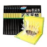 XH Trampa de Pegamento para ratón de 10 Piezas Trampas para Ratones para Coger Ratones Cucaracha Hormiga Araña Usar en Interiores (Color : Black, Size : 400MM*255MM)