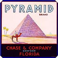 ERZANノスタルジックなデザインが人気のブリキ看板サンフォードフロリダピラミッドエジプトオレンジシトラスフルーツクレートラベルアート壁の装飾牌20x20cm
