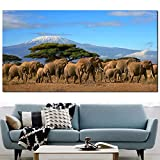 ZGZART Elefanten Herde Baum Mount Kilimanjaro Kenia Wilde