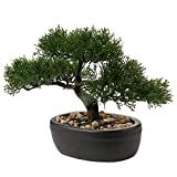 Árbol de bonsái artificial de 22,8 cm para decoración de plantas de cedro falso en macetas de plantas de imitación japonesas Bonsai Ceder decoración interior del hogar