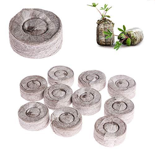 WRYIP Kokos Quelltabletten mit Nährstoffen,Anzuchterde komprimiert Block,Torffreier Anzuchterde,für Pflanzen Anzucht Sämlingen Und Saaten (10 Stück)