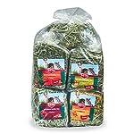 Kaytee Timothy Hay Plus Variety Pack 50 oz 6