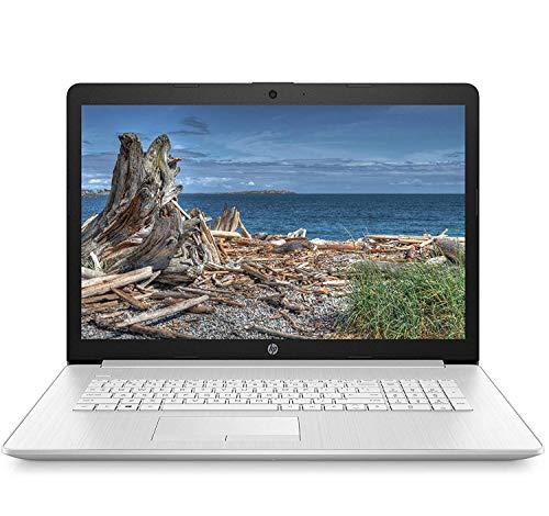 HP 17 2020 Premium Laptop Computer I 17.3' HD+ BrightView I AMD Athlon Gold 3150U I 8GB DDR4 512GB SSD I AMD Radeon Graphics WiFi DVD HDMI Webcam Win 10 Pro + Delca 16GB Micro SD Card (Renewed)