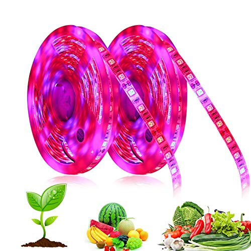 XLZHP 5M LED Grow Light Strip Full Spectrum UV Lamps for Plants Waterproof Phyto lamp Red blueTape for Greenhouse Grow Tent Hydroponic,4 red 1 blue,1M