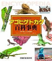 アゴヒゲトカゲ百科事典