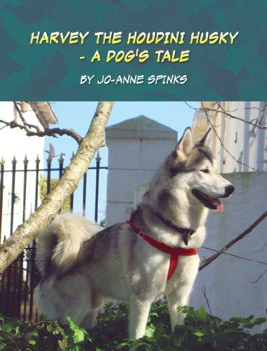 HARVEY THE HOUDINI HUSKY - A Dog's Tale (English Edition)