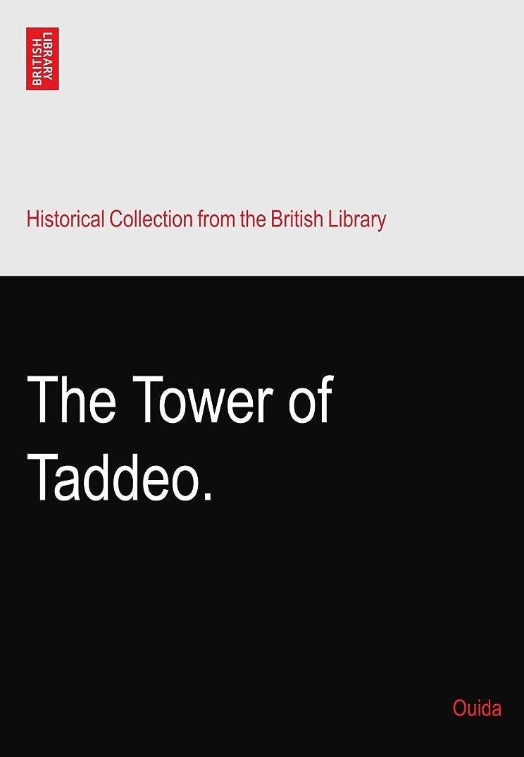道を作るペルーごめんなさいThe Tower of Taddeo.