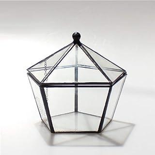 comprar comparacion MINGZE Terrario de Estilo Retro, Cristal Forma joyero pentagonal, Caja para Joyas, para Plantas, Maceta, decoración innova...